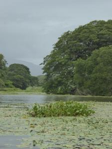 Islands in Lake NIcaragua